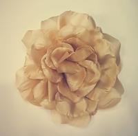 Цветы на заколке Ts1-25