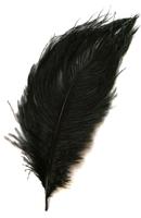 Перо страуса PRK25-30-3