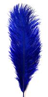 Перо страуса PRK25-30-11