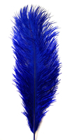Перо страуса PPK25-30-11