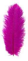 Перо страуса PRK20-25-50